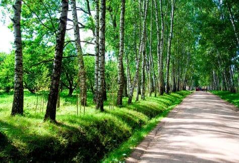 Экскурсии в загородном отеле ГРУМАНТ Resort & SPA, недалеко от Москвы, Тула, д. Грумант