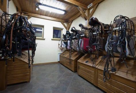 Катание на лошадях в загородном отеле ГРУМАНТ Resort & SPA, недалеко от Москвы, Тула, д. Грумант