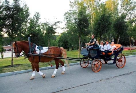 Катание в карете, семейный отдых в загородном отеле ГРУМАНТ Resort & SPA, недалеко от Москвы, Тула, д. Грумант